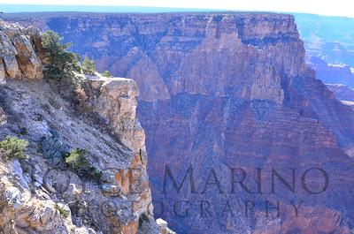 Grand Canyon:  DSC_1894R