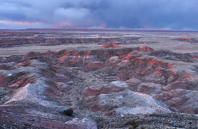 A Little Red in the Desert. Painted Desert in Petrified Forest NP near Holbrook, Arizona