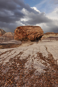 Almost a Petrified Wood HooDoo