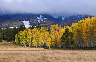 October Snow on the San Francico Peaks