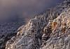 Storm Light in Oak Creek Canyon