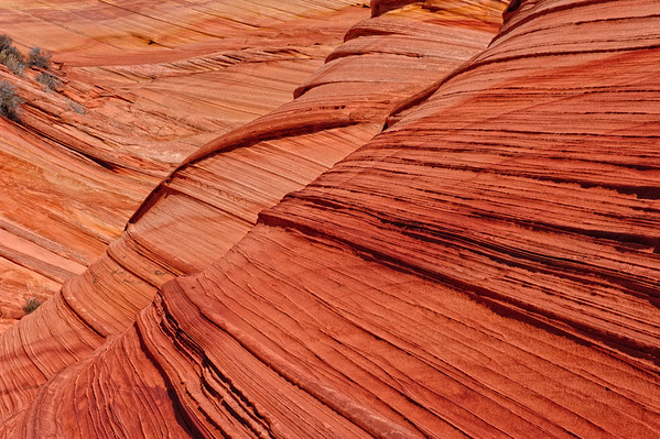 Paw Hole, South Coyote Buttes