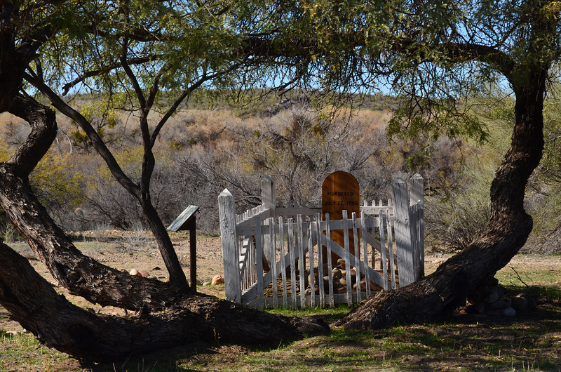 An old grave with a picket fence and a unusual tree around it in Arizona