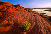 Arizona, Lake Powell, Glen Canyon, Sunrise Landscape 亚利桑那 沙漠 风景