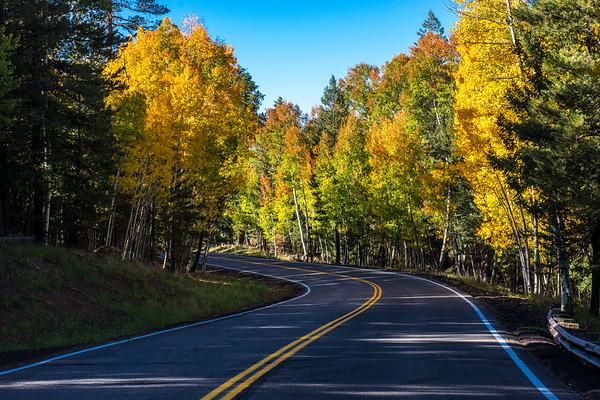Road To Snowbowl Flagstaff Arizona