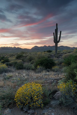 Sunset at Lost Dutchman State Park, near Mesa.