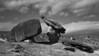 Lifestory of the cap rock.