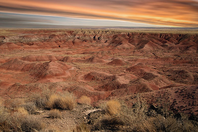 1DX_2019Painted Desert