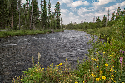 Gardner River, Yellowstone