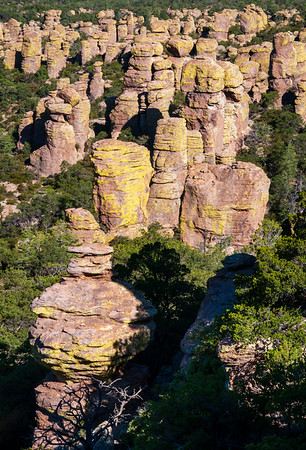 A Collection of Hoodoos at Chiricahua National Monument