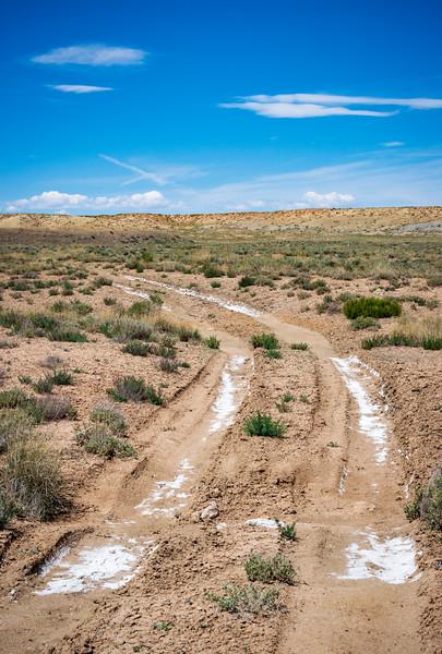 The Salt Covered Roads of Coal Mine Canyon