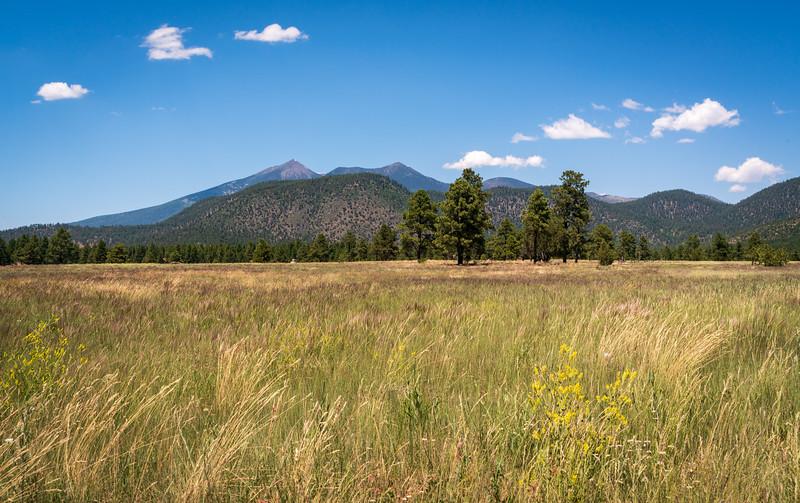 The Arid Landscape of Flagstaff, AZ