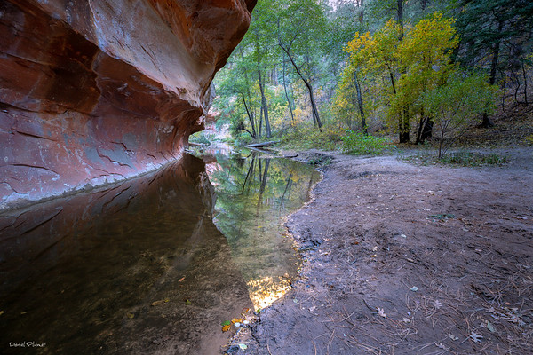Dawn At Oak Creek West Fork