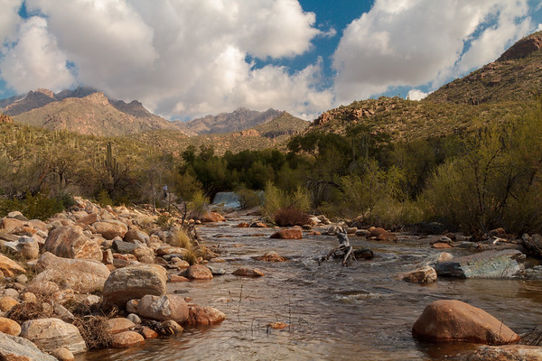 Stunning Sabino Canyon