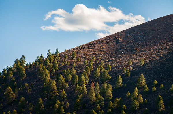 Hill and Cloud at Sunset Crater National Monument