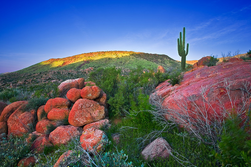 Arizona, Mazatzal Wilderness, Sunrise Landscape. 亚利桑那 沙漠, 风景