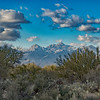 View of snow from the Saguaro national park