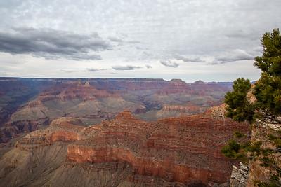 Grand Canyon 2020-90