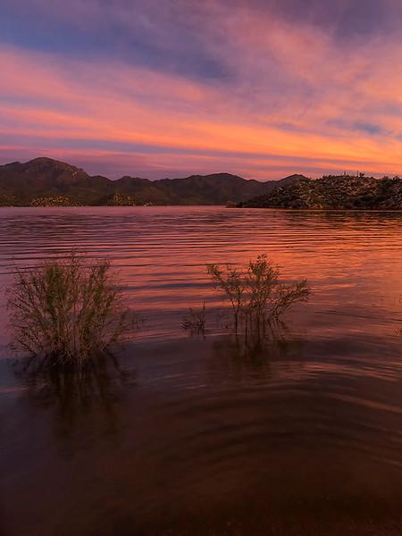 Bartlett Lake, AZ