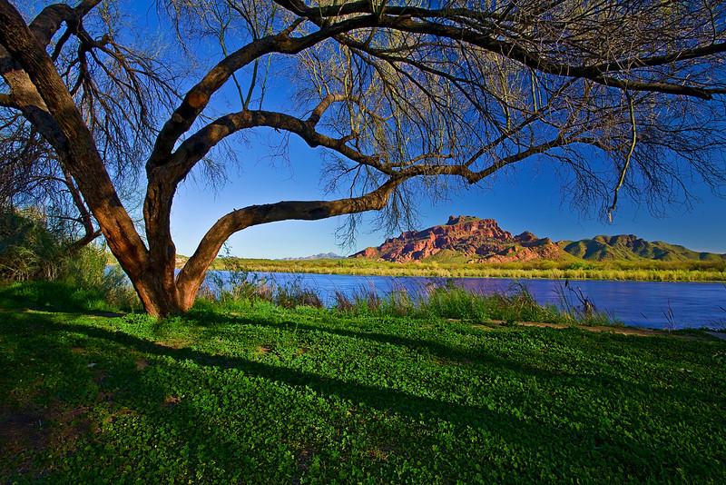 Arizona, Salt River Pima, Sunrise Landscape, 亚利桑那 沙漠, 风景