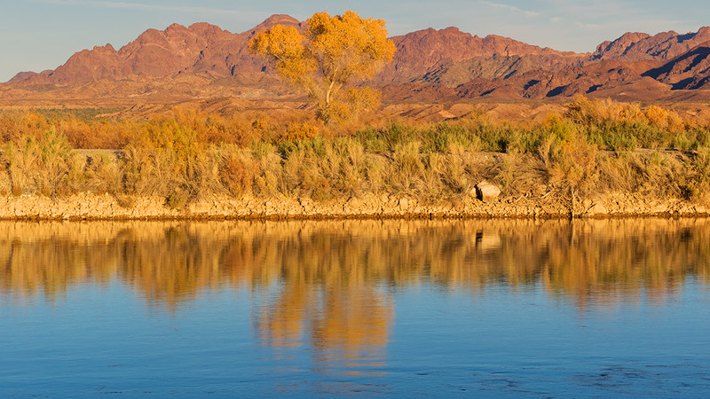 Golden light @ Colorado River