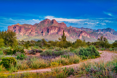 Early Spring in the Superstitions