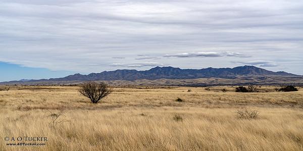 Empire Ranch Vista