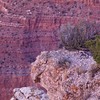 Arizona, Grand Canyon-8005