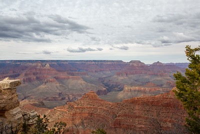 Grand Canyon 2020-91