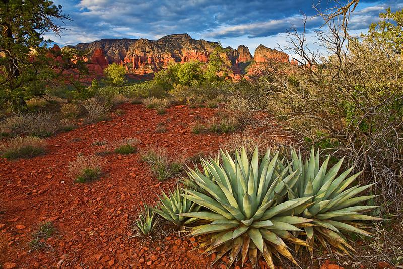 Arizona, Sedona, Red Rock Country, Sunset , Landscape, 亚利桑那, 红岩 沙漠, 风景