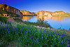 Arizona, Superstiton Wilderness, Lake, Wild Flowers Landscape,亚利桑那 沙漠, 风景