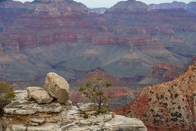 Grand Canyon 2020-80