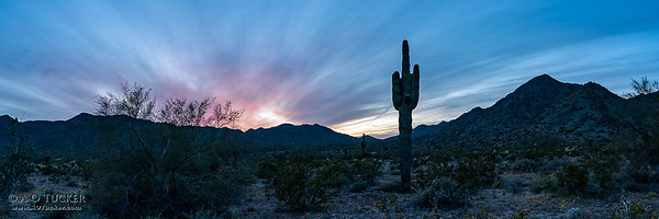 Arizona Watercolor Sunset