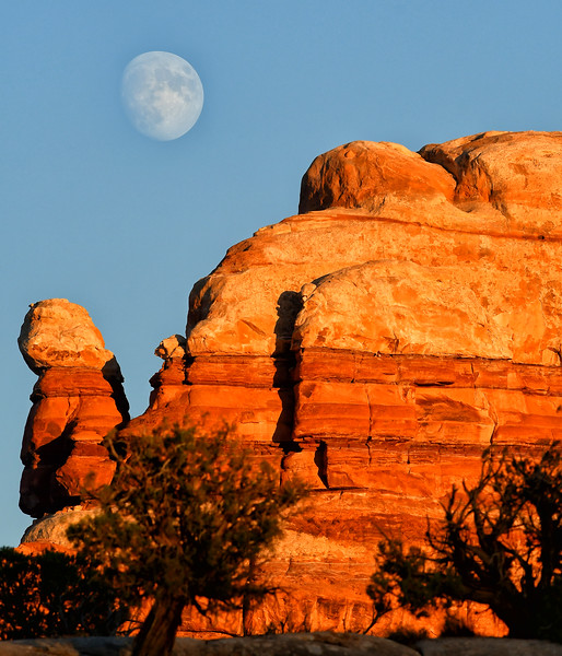 Moonrise over canyon lands
