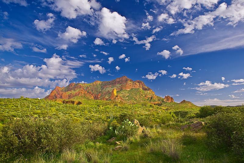Arizona, Boyce Thompson Arboretum State Park, Landscape,亚利桑那 沙漠, 风景