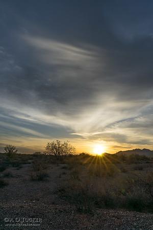 Bring Light To The Desert