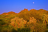 Arizona, Superstiton Wilderness, Lost Dutchman State Park,Sunset Landscape, 亚利桑那 沙漠, 风景