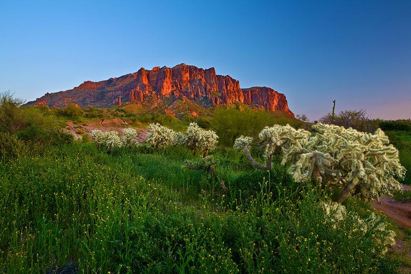 Arizona, Superstiton Wilderness, Lost Dutchman State Park,Sunset Landscape, 亚利桑那 沙漠, 风景