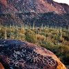 Petroglyphs @ Signal Hill.  Saguaro National Park, Tucson, Arizona