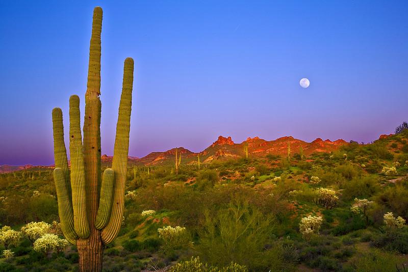 Arizona, Superstiton Wilderness, Lost Dutchman State Park,Sunset Landscape,亚利桑那 沙漠, 风景