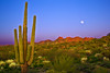 Arizona, Superstiton Wilderness, Lost Dutchman State Park,Sunset Landscape,亚利桑那 沙漠, 风景
