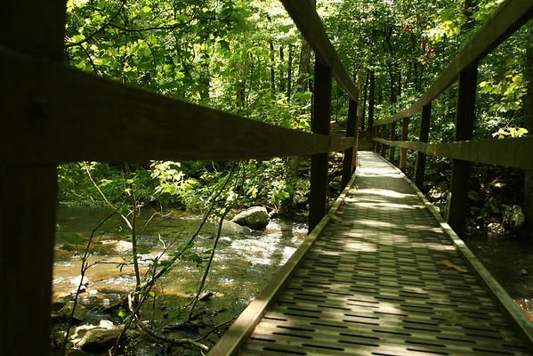 Foot bridge down to Cedar Falls<br /> Petit Jean Mt.