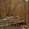 Petite Jean Cedar Creek Footbridge Up the creek