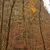 Petite Jean Cedar Creek Cliffs