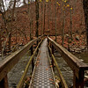Petite Jean Cedar Creek Footbridge Cedar Falls Trail