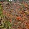 Petite Jean Cedar Falls Overlook Canyon Walls