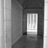 Arlington National Cemetery 5