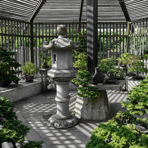 20120901. Arnold Arboretum, Boston MA. Larz Anderson bonzai collection.