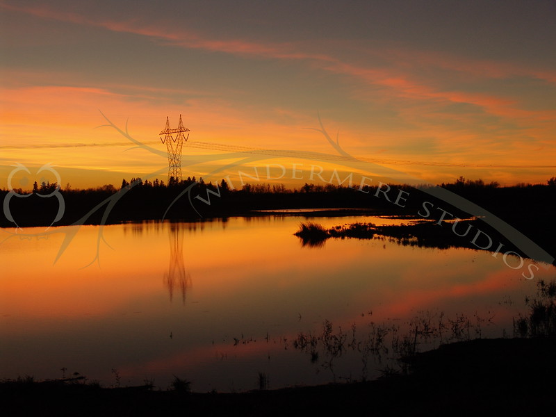 Powerlines and sunset reflected in a slough, Edmonton, Alberta