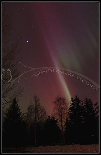 Northern Lights from my backyard